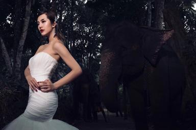 斯里兰卡婚纱摄影,斯里兰卡婚纱照